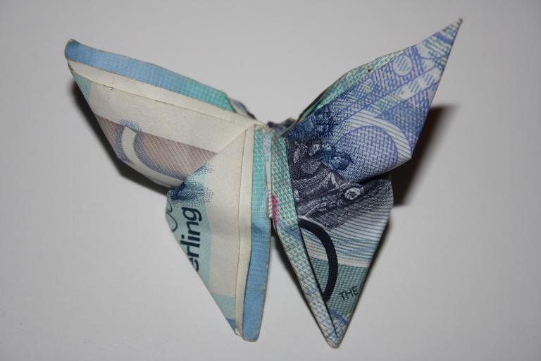 motýl z bankovek