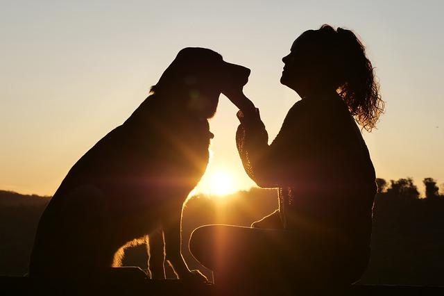 Žena, pes a východ slunce